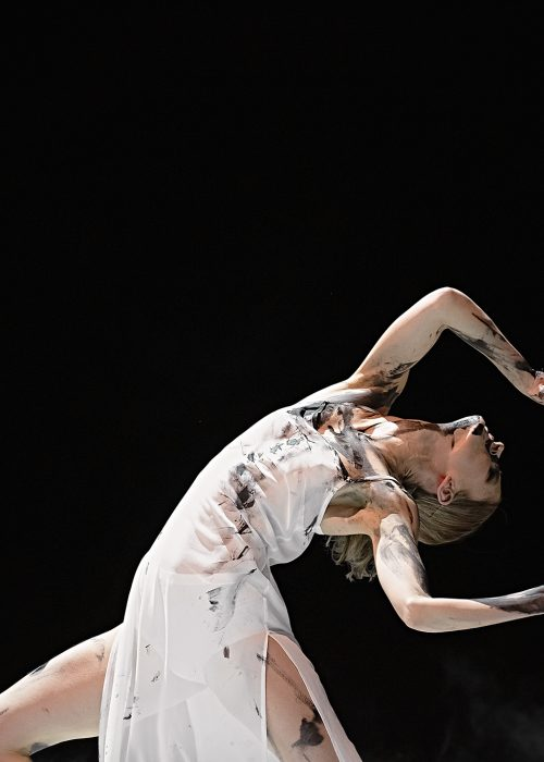 theaterfotografie dansfotograaf introdans kim vos fotografie